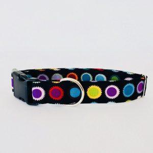collar perro ruedas dentadas HP1